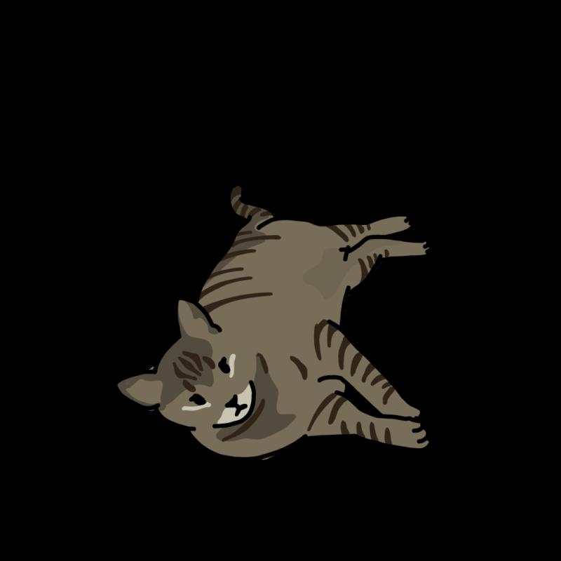 ぼくはトラ(ネコ)ノーマル