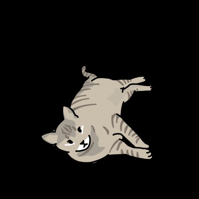 ぼくはトラ(ネコ)グレー