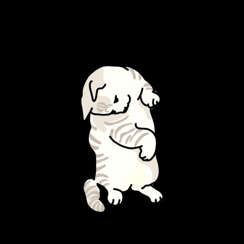 トラだよ(ネコ)ホワイト