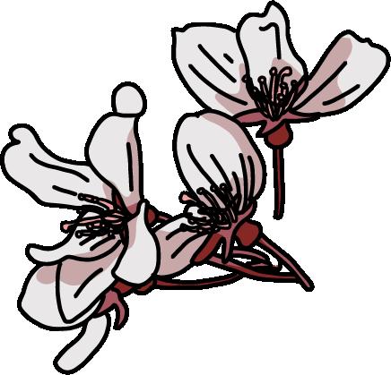 桜フレーク束