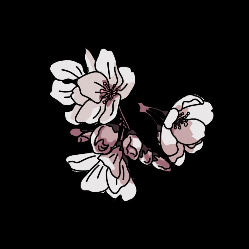 桜塊ダーク
