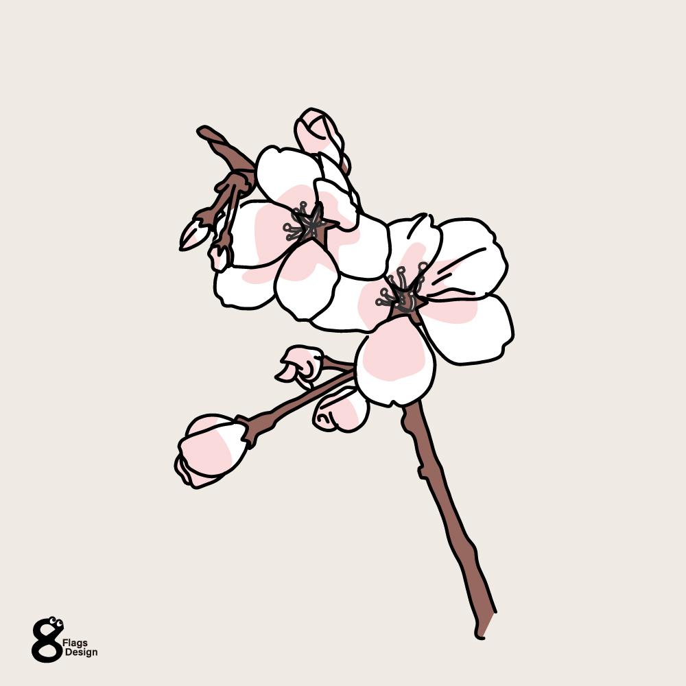 桜の小枝のキャッチ画像
