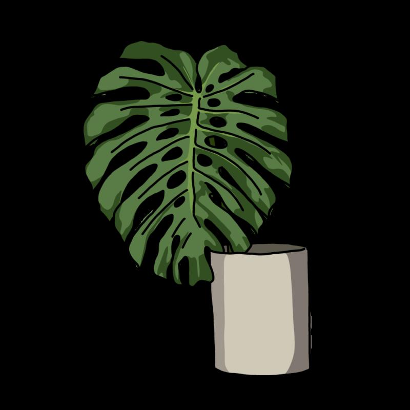 モンステラの花瓶グレー