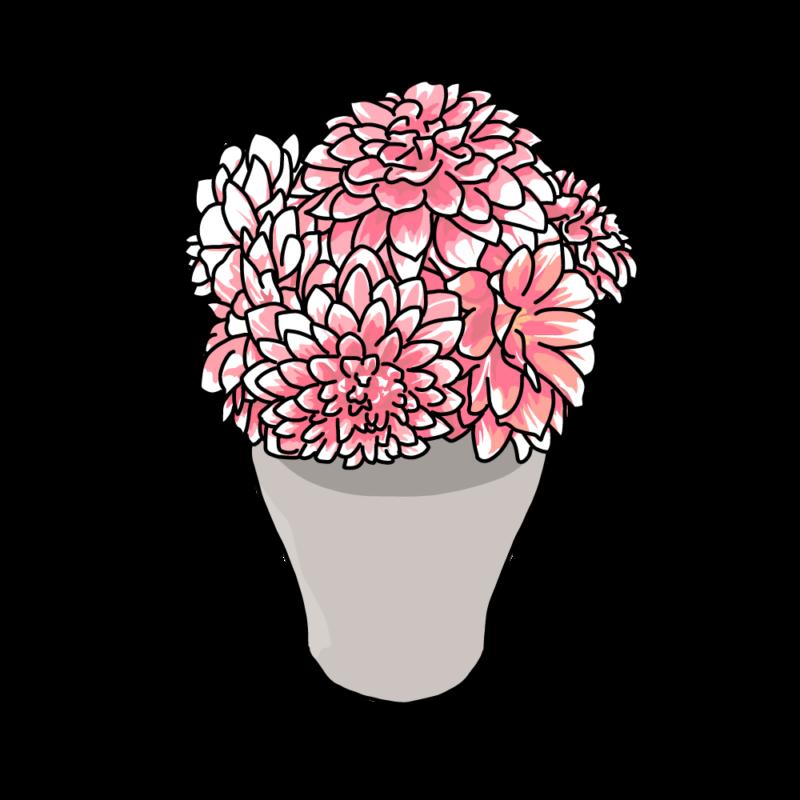 ダリアの花瓶ピンク
