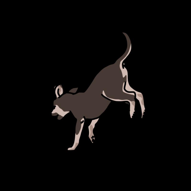 ジャンピング犬黒