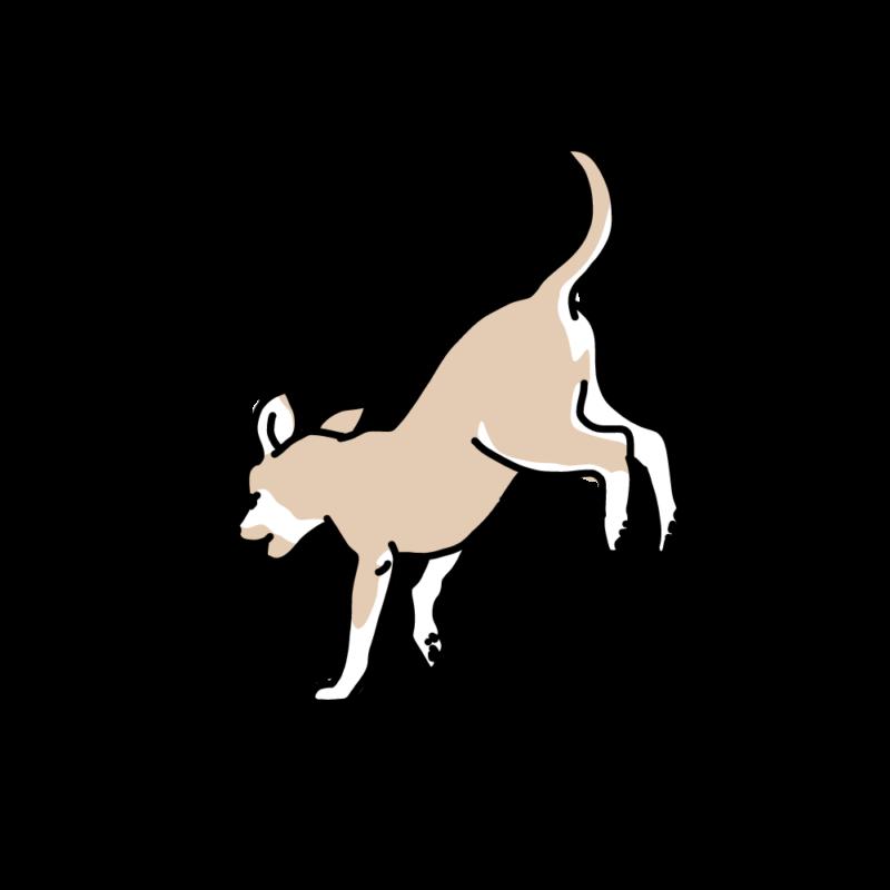 ジャンピング犬砂