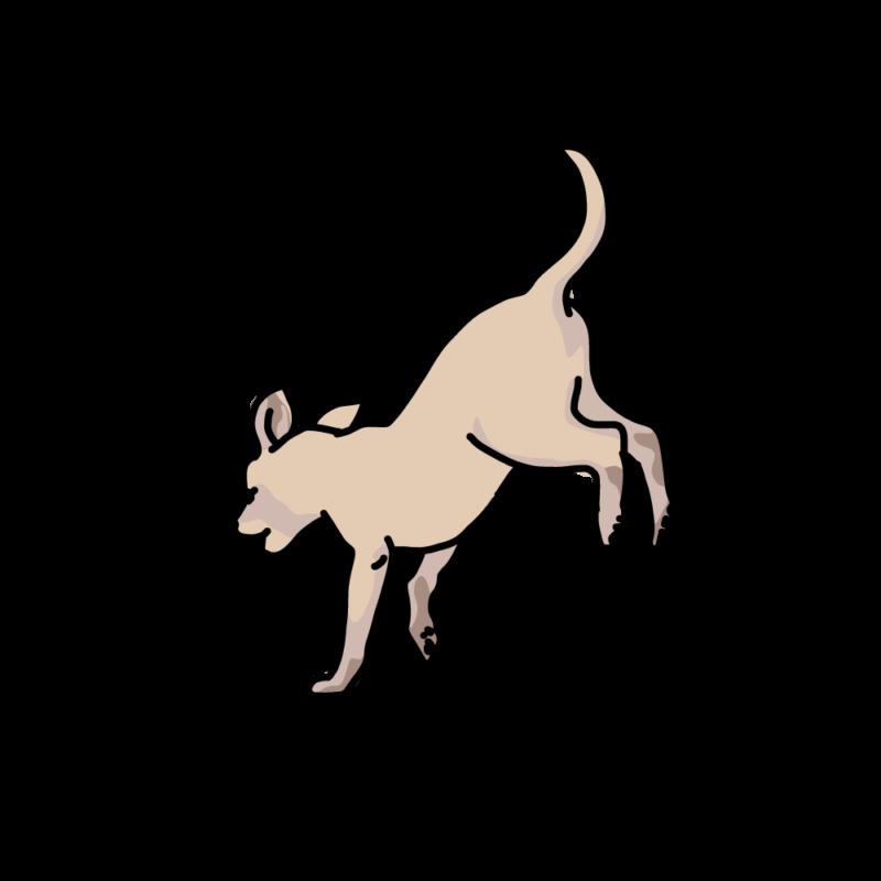 ジャンピング犬ベージュ