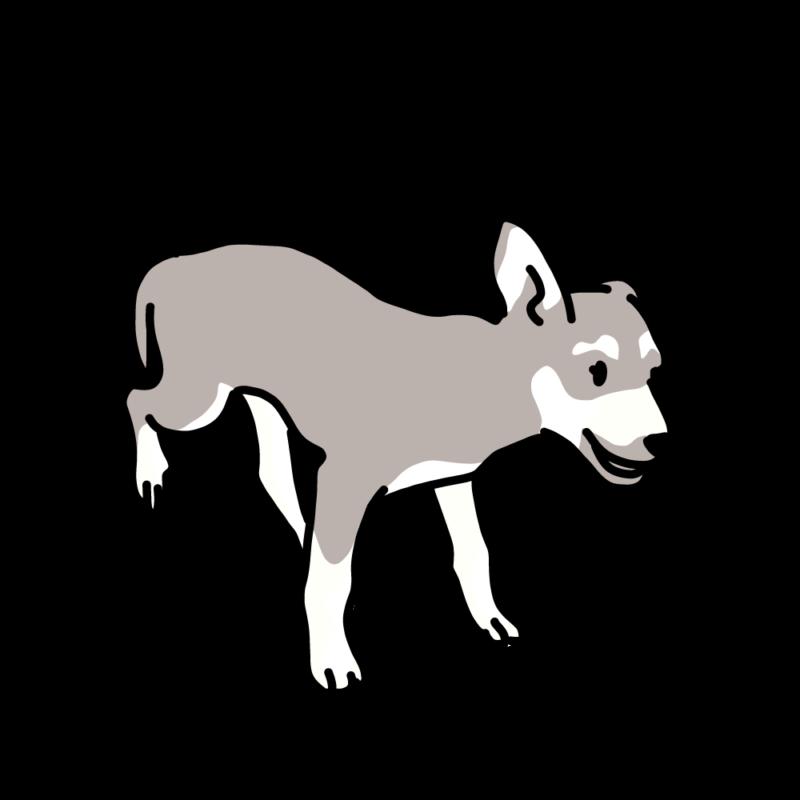 ルンルンしている仔犬グレー