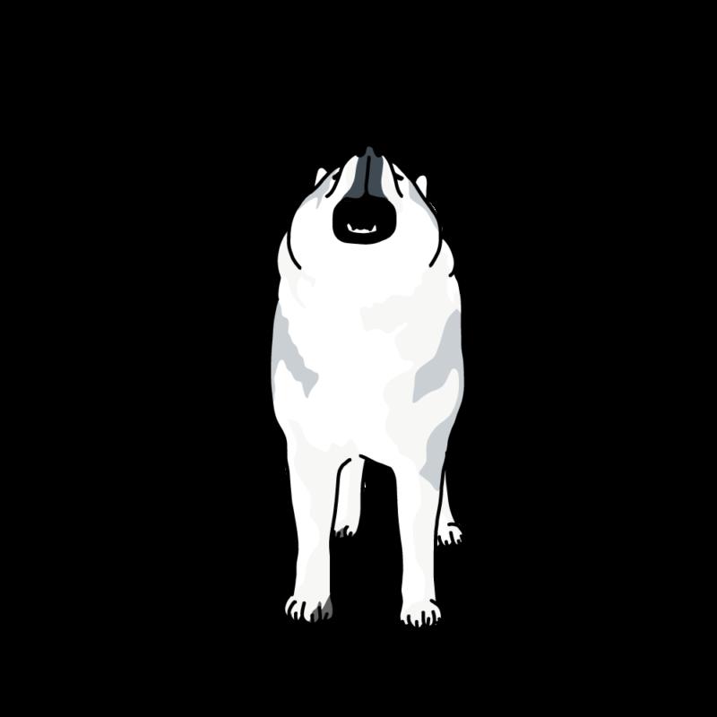 遠吠えるオオカミ犬白