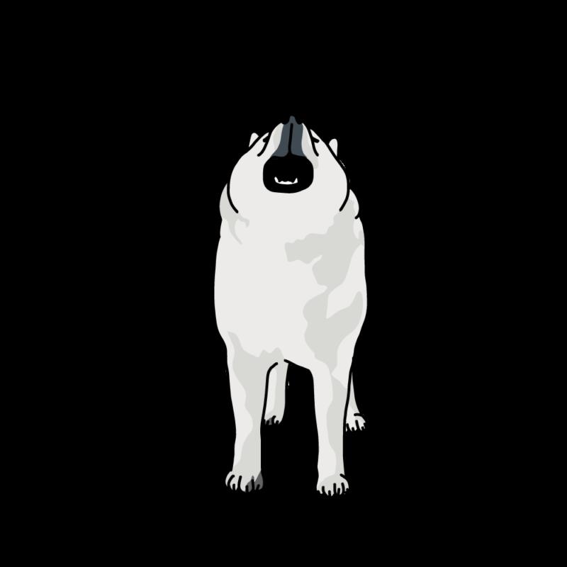 遠吠えるオオカミ犬グレー
