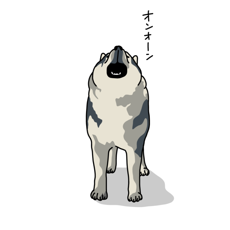 遠吠えるオオカミ犬ワイルド