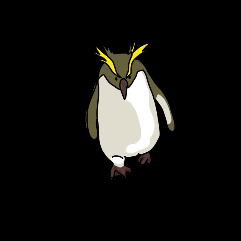 やる気みなぎるイワトビペンギンイエロー