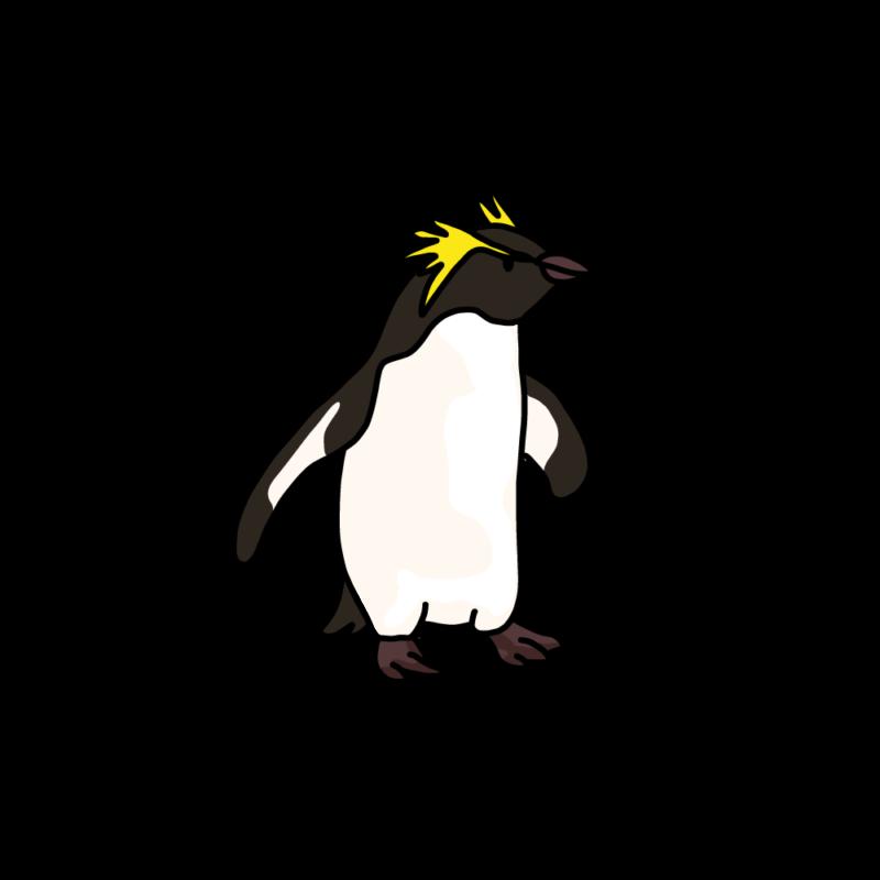 遊びに行くイワトビペンギンノーマル