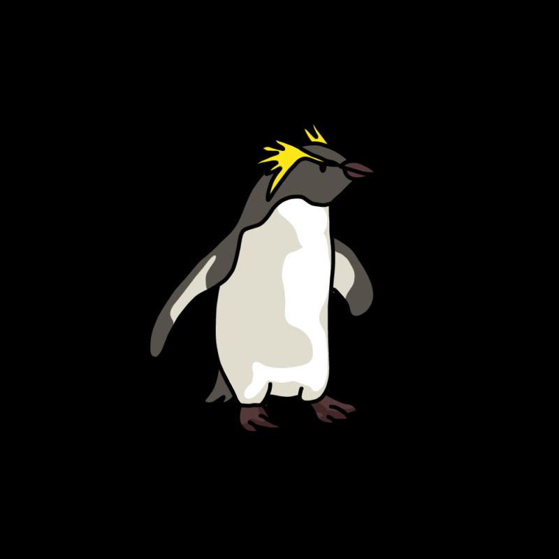 遊びに行くイワトビペンギングレー