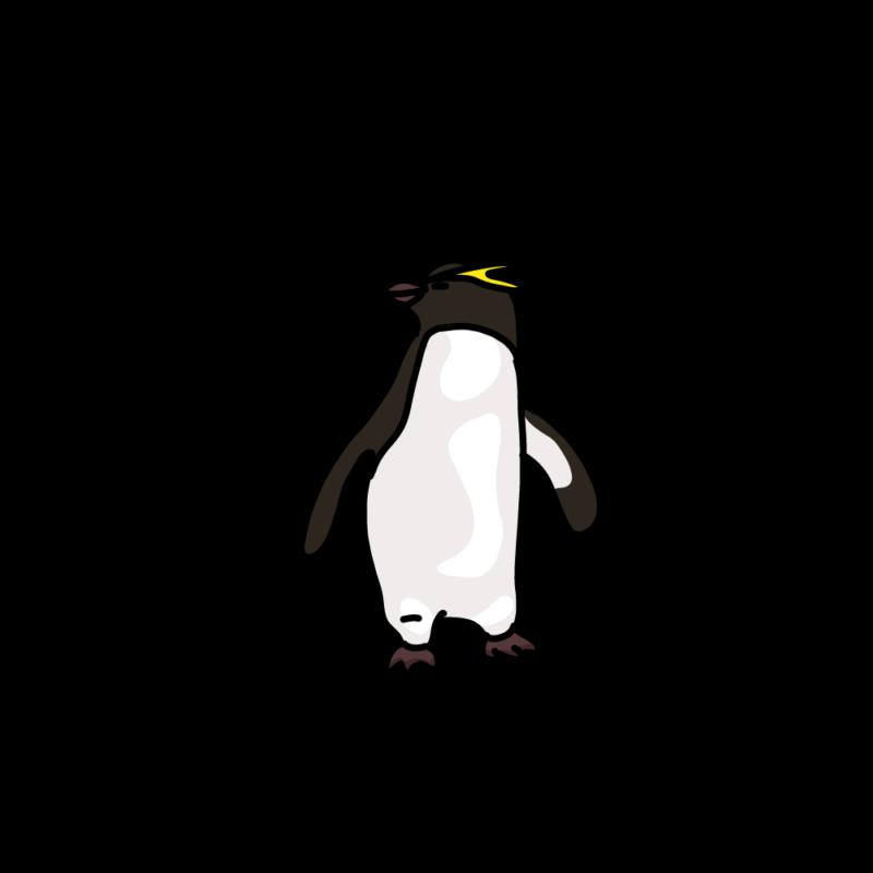 振り向くイワトビペンギンノーマル