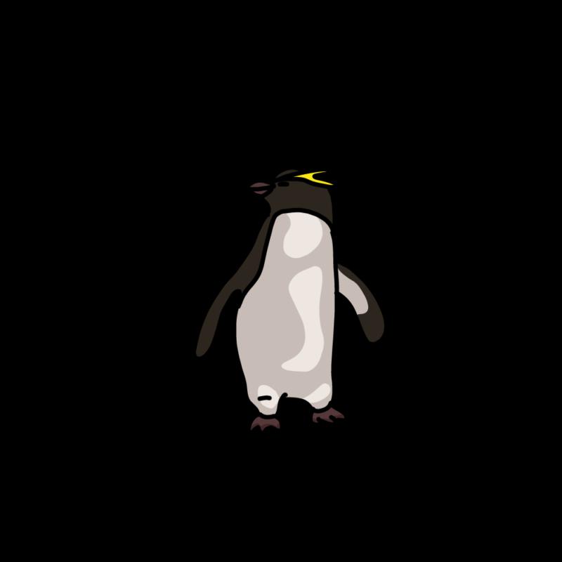 振り向くイワトビペンギンムラサキ
