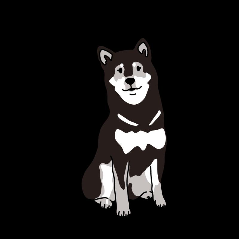 フワフワ柴犬黒