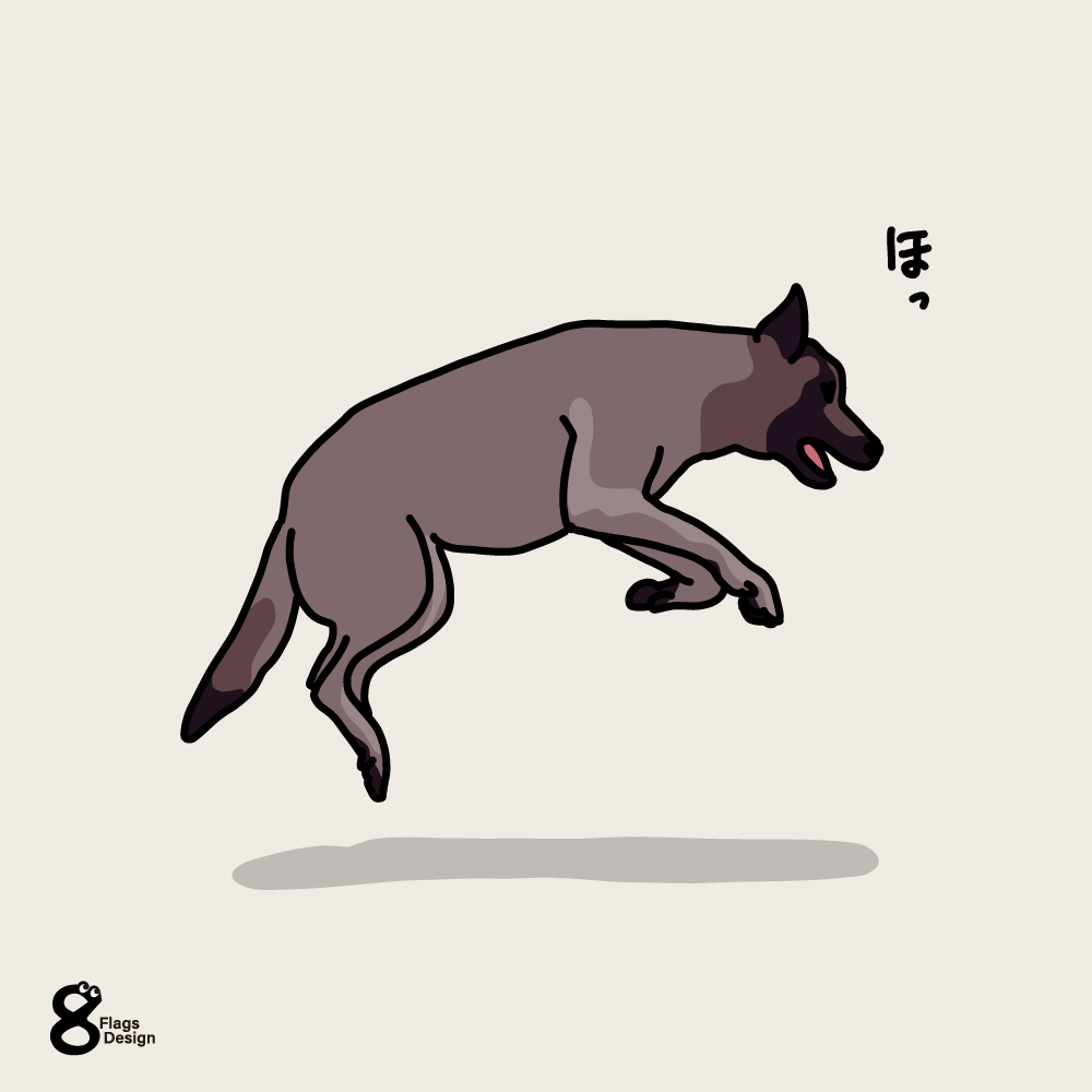 跳ねる犬のキャッチ画像