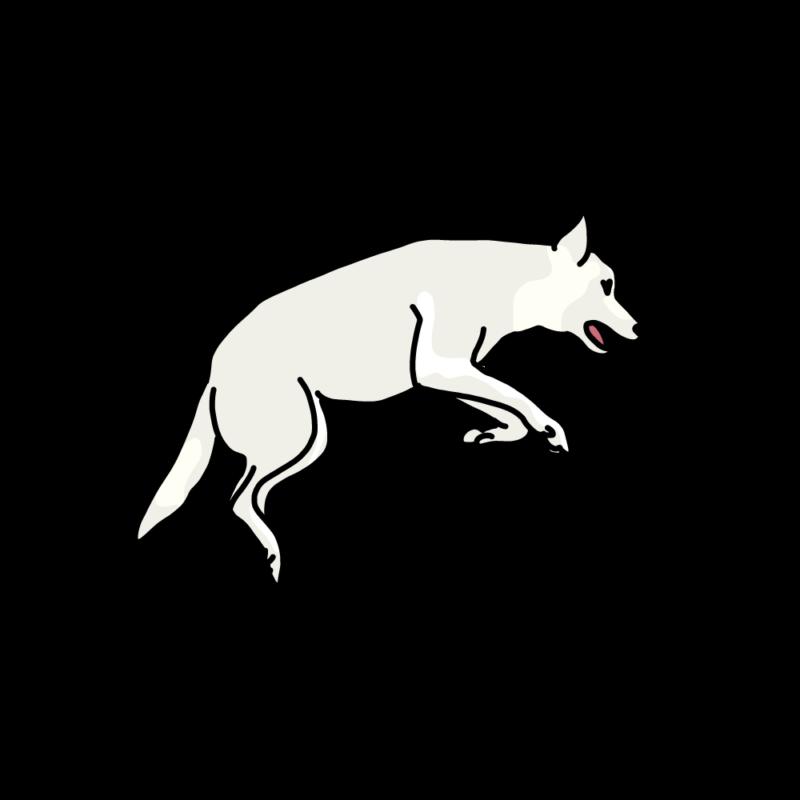 跳ねる犬白