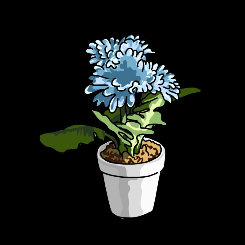 春の花の鉢ブルー