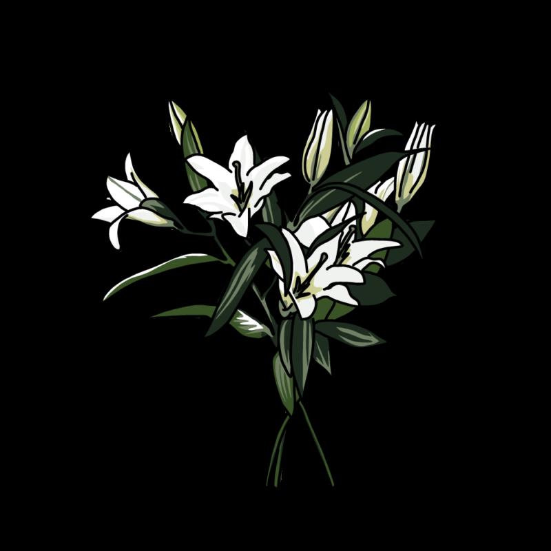 ユリの花ホワイト