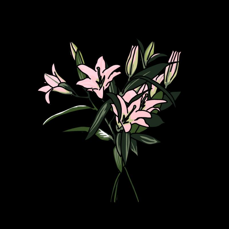 ユリの花ピンク