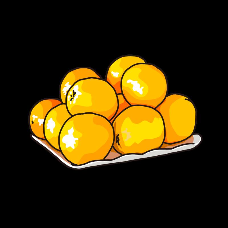 グレープフルーツ盛りオレンジ