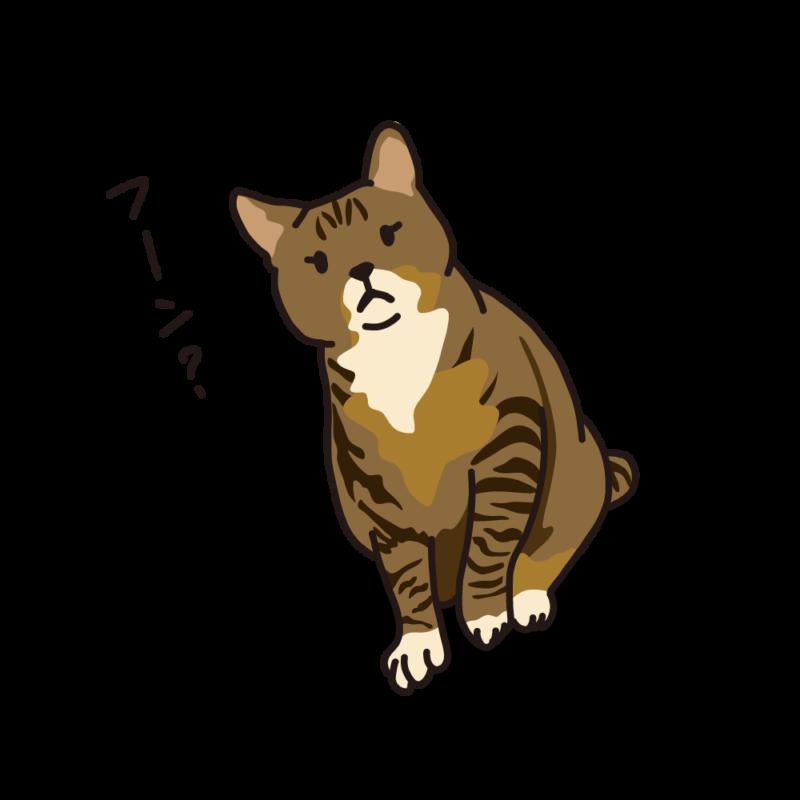 構って欲しいネコトラ
