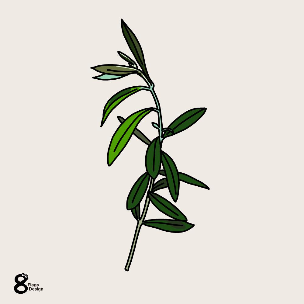 オリーブの枝1本のキャッチ画像