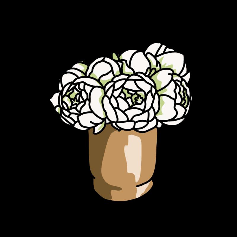 白い芍薬02