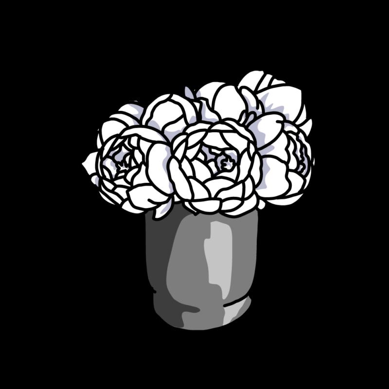 白い芍薬03