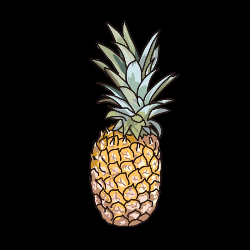 パイナップル01