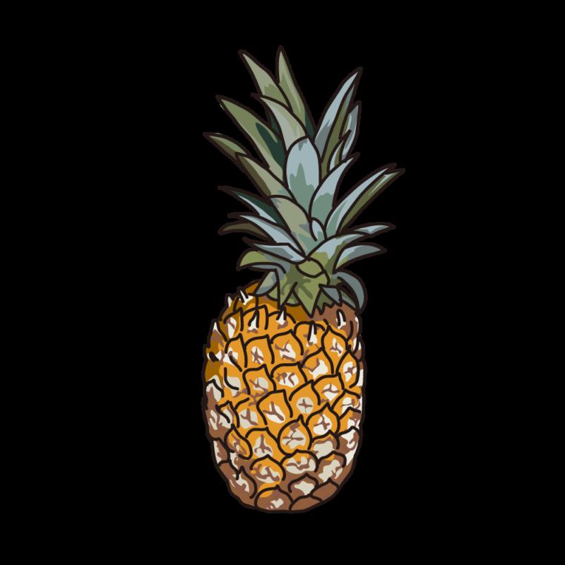 パイナップル02