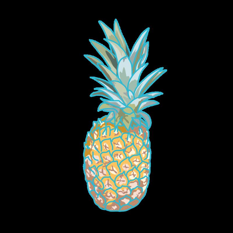 パイナップル04