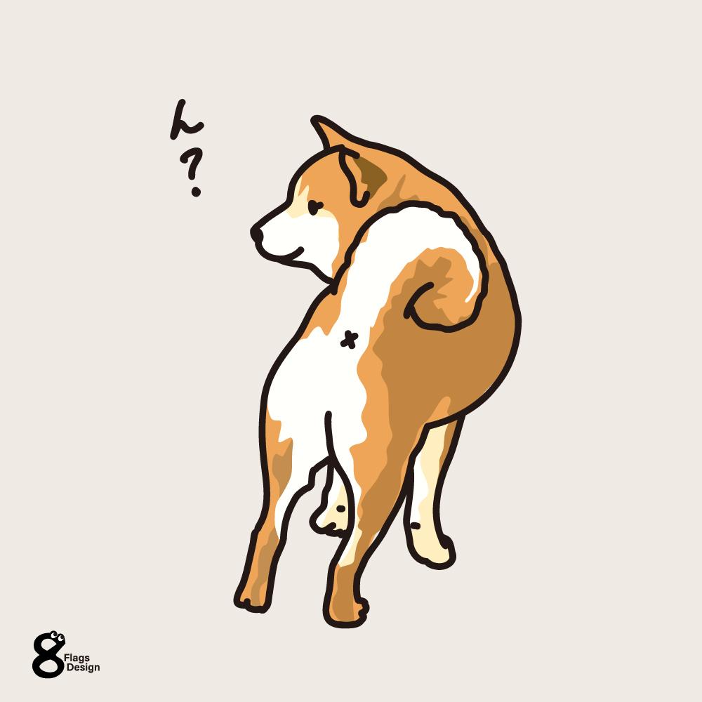 振り向く柴犬のキャッチ画像