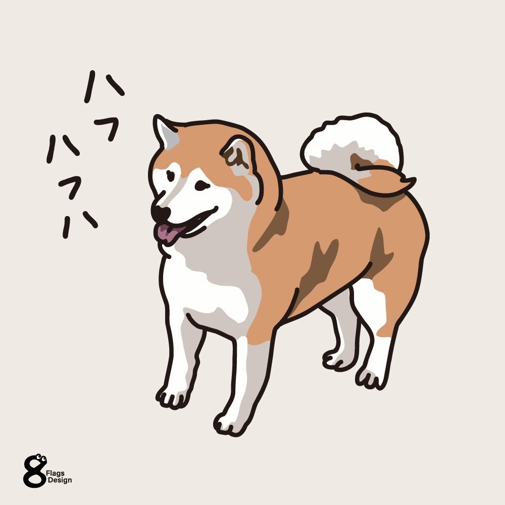 ハフハフ柴犬のキャッチ画像