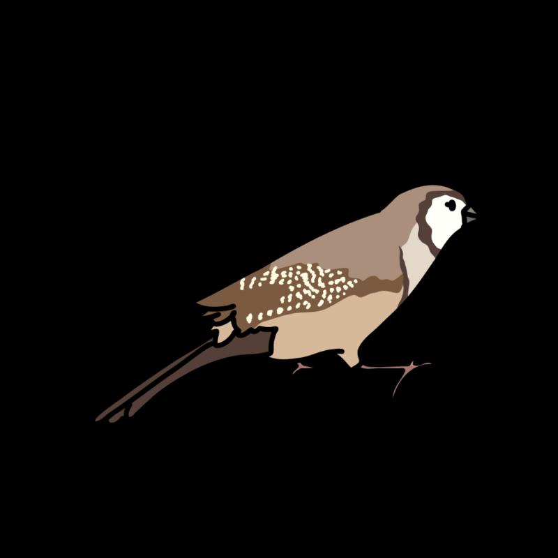 メーメー鳴く鹿の子雀01