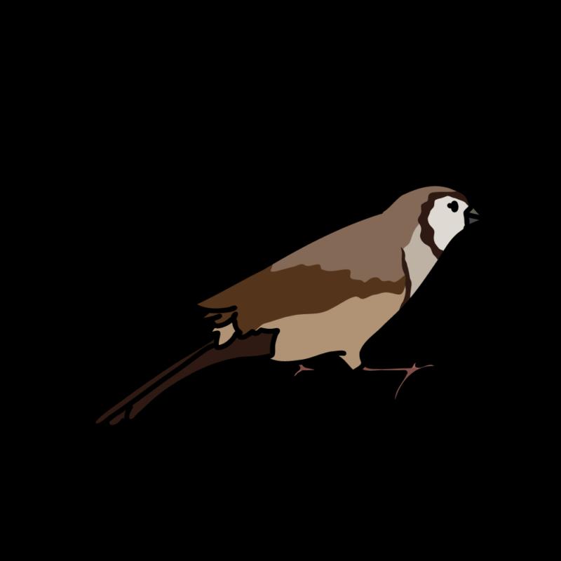 メーメー鳴く鹿の子雀02