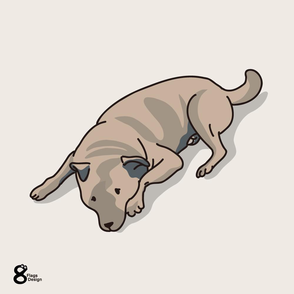 タレ犬のキャッチ画像