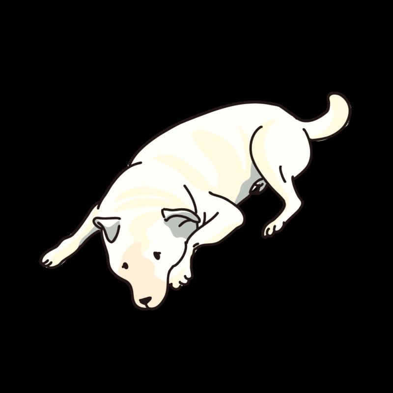 タレ犬02