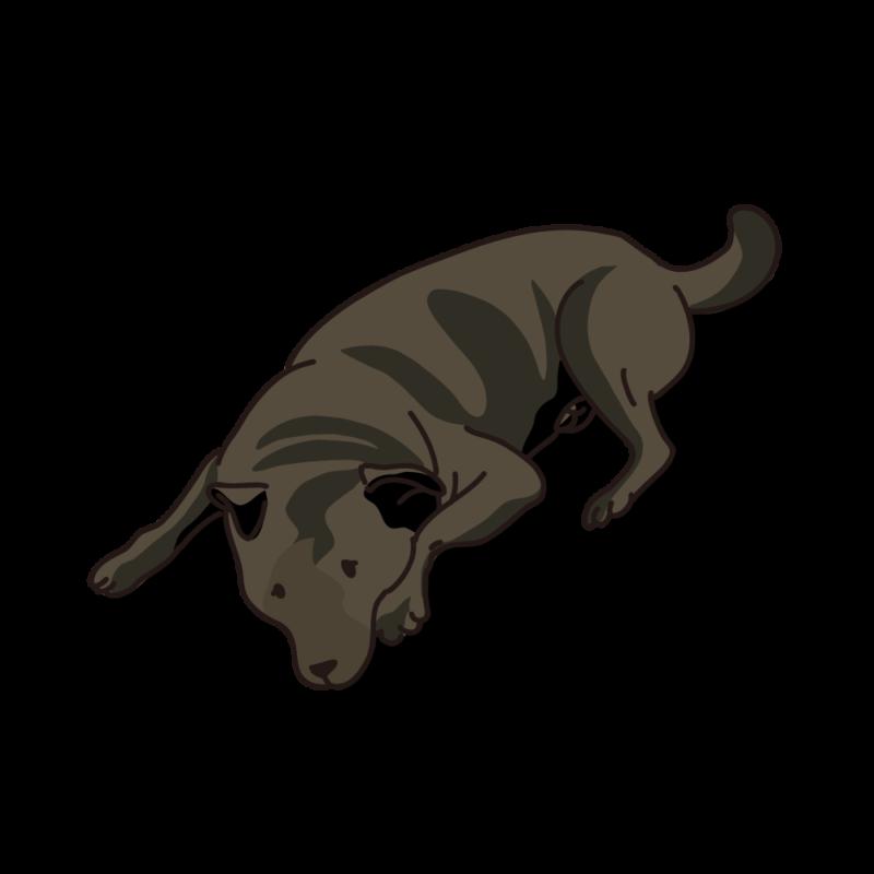 タレ犬03