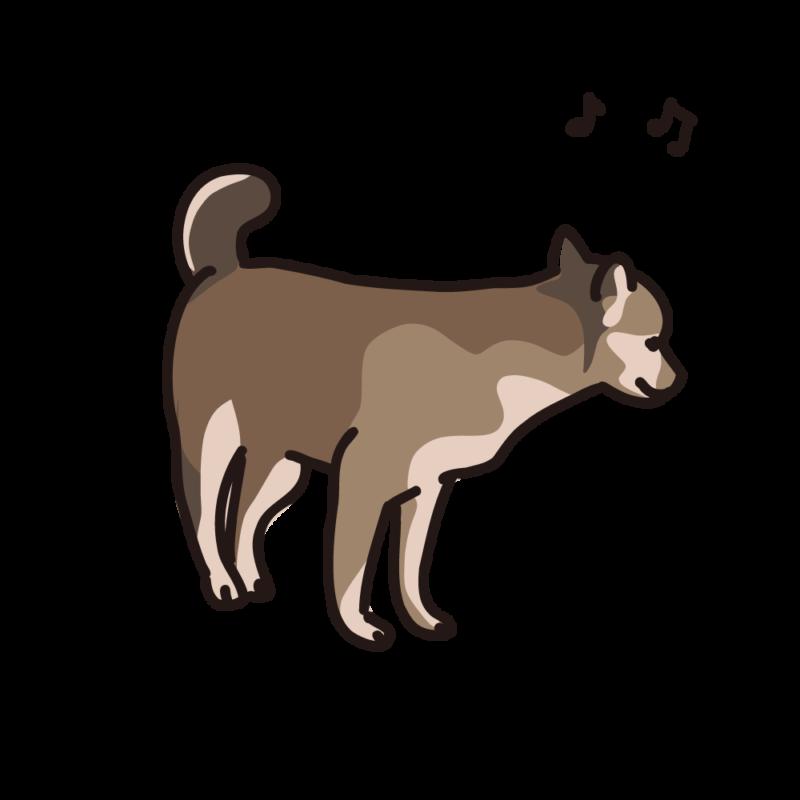 ご機嫌の仔犬01