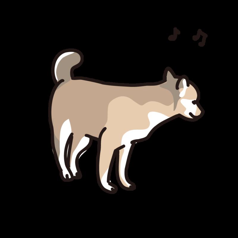 ご機嫌の仔犬02